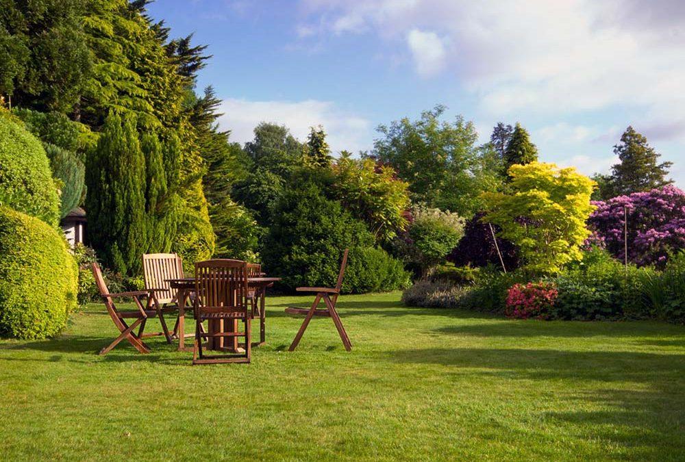 Κήπος με χρώμα και άρωμα