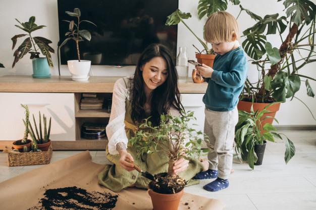 Επιλέξτε το φυτό που σας ταιριάζει καλύτερα…